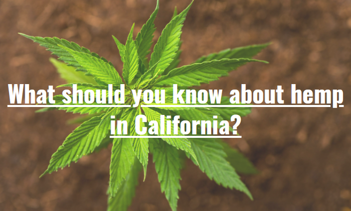 What should you know about hemp in California?